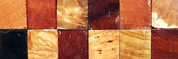 Holzarten Erkennen übersicht holzarten brennholz brennwert und nutzung